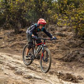 Biking Pano by Ian Marcuson Wald - Sports & Fitness Cycling ( sports, pano, mtb, moving, bike )