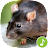 Appp.io - Mouse and Rat sounds Icône