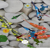 Fishes and Frogs Live Wallpaper Lite