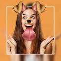 Editor de Fotos Collage Maker