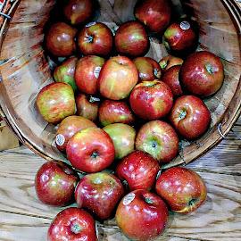 Apples at the Farmer's Market by Tina Stevens - Food & Drink Fruits & Vegetables ( basket, fruit, macintosh, counter, apples, food, object,  )