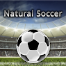 Установить  Natural Soccer [Full]