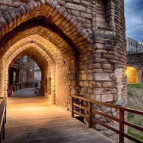 The Black Gate by Davey T - Buildings & Architecture Public & Historical ( black gate, stone, historical, evening )
