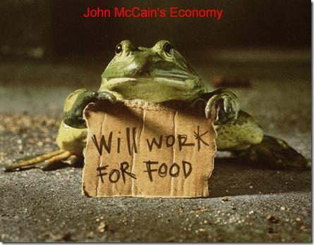 McCains Economy  2