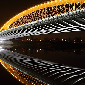 Troja Bridge - 02 by Drahomír Škubna - Buildings & Architecture Bridges & Suspended Structures ( škubna, drahomir, drahomír, skubna, cz, night, bridge, prague )