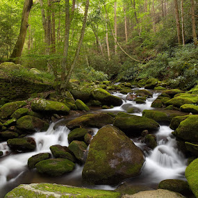 Roaring Fork by Tim Devine - Landscapes Waterscapes (  )