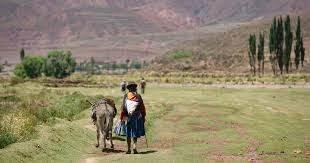 Bolivia, donde menos bajó la pobreza, según un informe de la Cepal