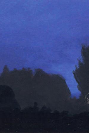 florent-contin-roux-nocturne recadré