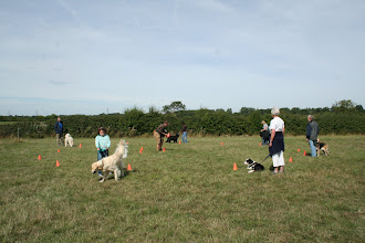 Photo: DogBasics Fun Day 2013  - playing Musical Chairs.