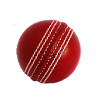 World Cup Cricket 4.0