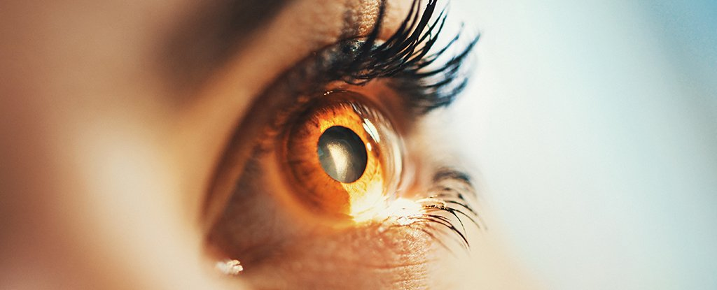 Doctors Have Restored The Sight of Two People in a Monumental World First