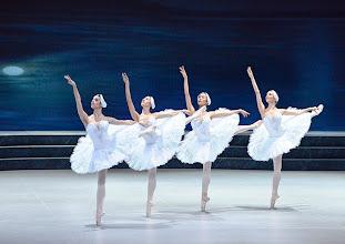 Photo: Ballett SCHWANENSEE in der Wiener Staatsoper/ Wiener Staatsballett. Maria Alati, Ioanna Avraam, Rui Tamai, Ester Ledan. Premiere 16. März 2014. Foto: Barbara Zeininger.