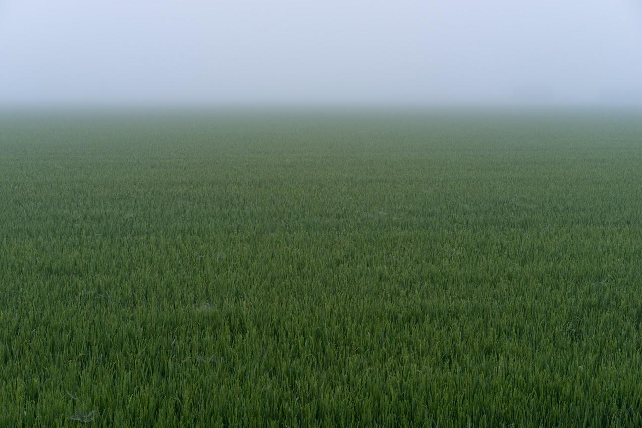 霧に包まれた未知なる空間
