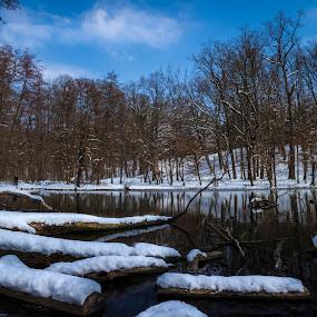Maksimir in snow by Nena Volf - Uncategorized All Uncategorized ( maksimir, blue sky, winter, snow, zagreb,  )