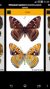 Atlas of Czech Butterflies- screenshot thumbnail