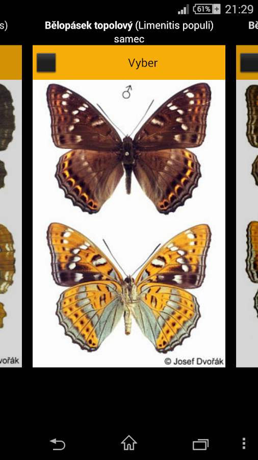 Atlas of Czech Butterflies- screenshot