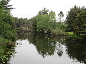 Photo: (Year 2) Day 351 - Lovely Reflection