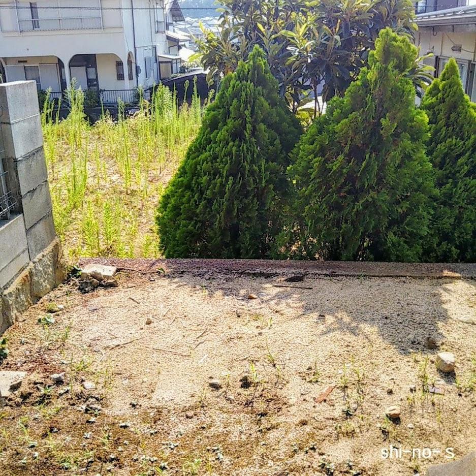 解体処分された後の庭の様子