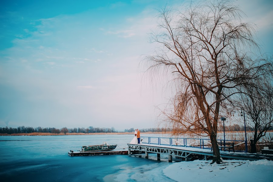 Wedding photographer Aleksandr Anpilov (lapil). Photo of 20.02.2016