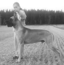 Photo: Dogiwogin Wolfman Jack