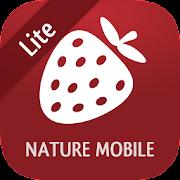 Wild Berries and Herbs 2 LITE