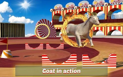 Goat-Monkey-Stunts 6