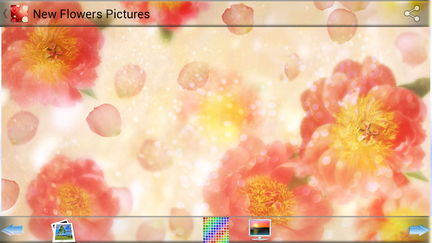 android New Flowers Pictures Screenshot 2