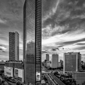 The Tall One by Miko Adji - Black & White Buildings & Architecture ( building, black and white, indonesia, jakarta, cityscape, architecture,  )