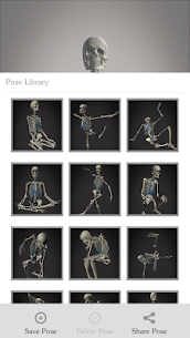 Skelly MOD (Cracked): Poseable Anatomy Model 4
