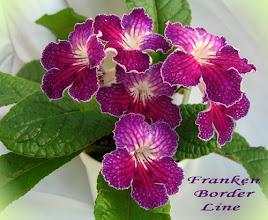 Photo: Franken Border Line