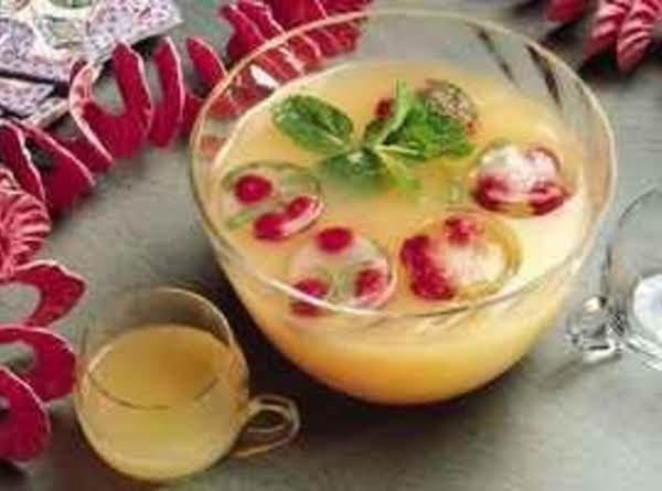 Sparkling Citrus Punchy Punch For A Party Recipe