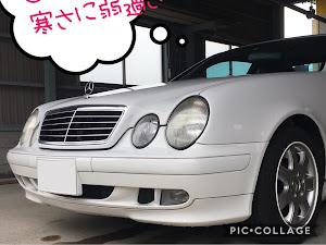 CLK W208 のカスタム事例画像 猫田慎之介さんの2019年02月11日23:09の投稿