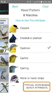 iBird UK Lite Free Bird Guide- screenshot thumbnail