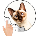 Cat Photography Color By Number - Pixel Art icon