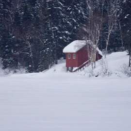 Red Cabin by Debbie Squier-Bernst - Buildings & Architecture Other Exteriors (  )