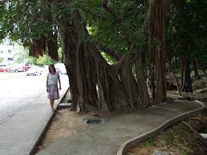 Photo: Spaziergang von Playacar nach Playa Del Carmen