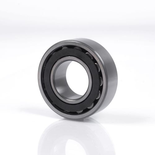 Toroidial roller bearings