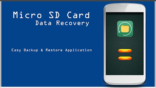 Micro SD Card Data Recovery screenshot 0