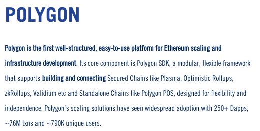 Présentation du projet Polygon par Mark Cuban Companies