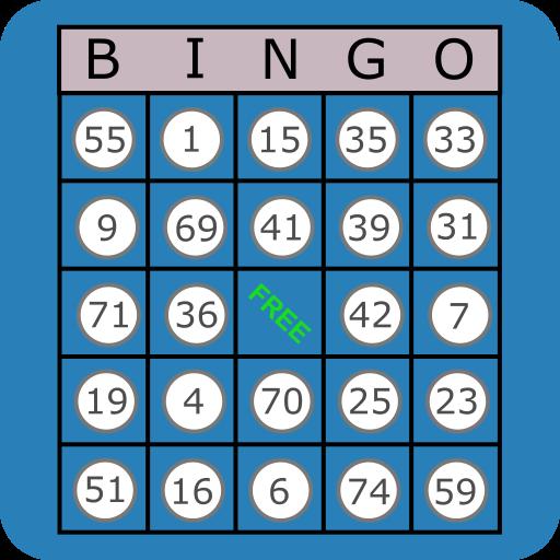 Classic Bingo Touch