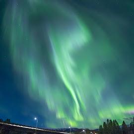 Aurora near Trondheim, Norway by Grete Øiamo - Landscapes Weather ( water, green, aurora borealis, bridge, norway )