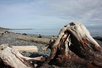 Photo: Victoria - Strand beim Beacon Hill Park