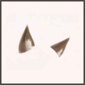 茶色の狼耳