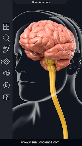 Brain Anatomy Pro. 1.6 screenshots 2