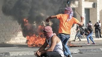 Palestine Now/Viva Cuba Libre