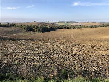 terrain à Le Castéra (31)