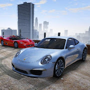 Driver Porsche Carrera 911 City Area