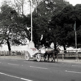 Lone Chariot........ by Dipan Chaudhuri - Transportation Other