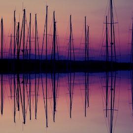 by Vanja Duraković - Digital Art Places ( edit, edited, edits, photomanipulation, editoftheday, manipulation, manipulated )