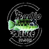 Radio Sauce 99.5 F.M.